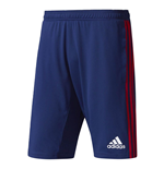2017-2018 Ajax Adidas Training Shorts (Dark Blue)