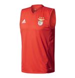 2017-2018 Benfica Adidas Sleeveless Training Jersey (Red)