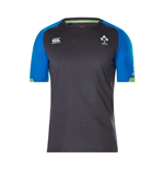 2017-2018 Ireland Rugby Cotton Training Tee (Asphalt)