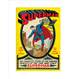 Superman Poster 271571