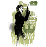 Star Wars Poster 271592