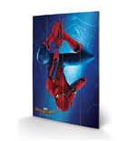 Spiderman Print 276276