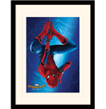 Spiderman Print 276277