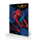 Spiderman Print 276283