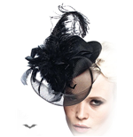 Black Hat with Feathers and Veil