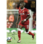 Liverpool FC Poster 285122