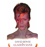 David Bowie Poster 288144