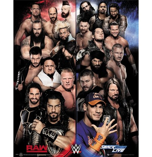 WWE Poster 289506