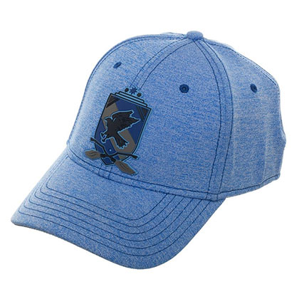 HARRY POTTER Blue Ravenclaw Flexfit Hat