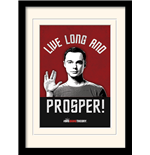 Big Bang Theory Framed Print - Live Long And Prosper - 30X40 Cm