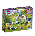 Friends Lego and MegaBloks 295240