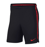 2018-2019 Turkey Nike Dry Squad Training Shorts (Black)