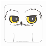 Harry Potter Coaster Hedwig Case (6)