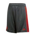 2018-2019 Bayern Munich Adidas Training Shorts (Utility Ivy) - Kids