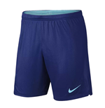 2018-2019 Holland Nike Away Shorts (Blue)