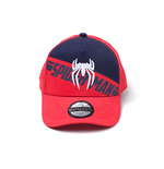 Spiderman - PS4 3D Embroidery Screen Print Curved Bill Cap