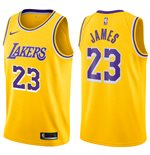 Men's Los Angeles Lakers LeBron James Nike Icon Edition Replica Jersey