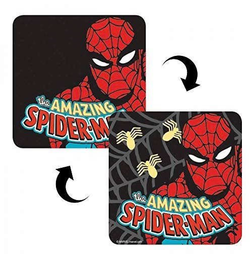 Spiderman Coaster 313196