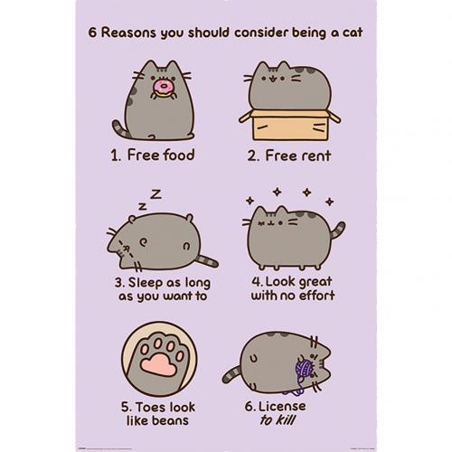 Pusheen Poster Reasons 157