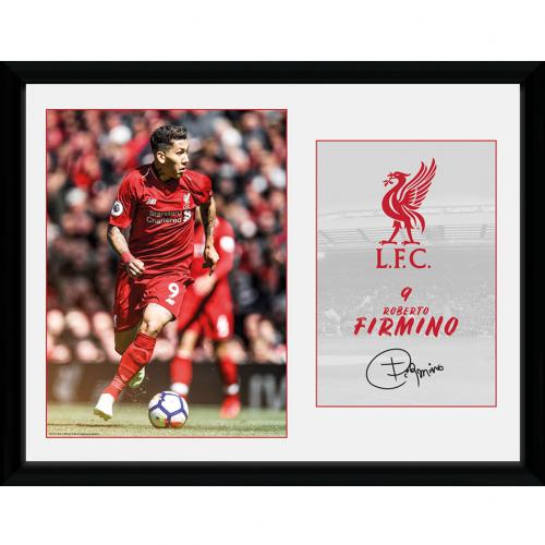 Liverpool F.C. Picture Firmino 16 x 12