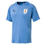 2018-2019 Uruguay Puma Training Jersey (Blue)