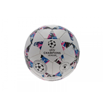 UEFA Champions League Football Ball 348164