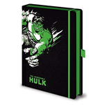 Hulk Notebook 348792