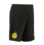 2019-2020 Borussia Dortmund Training Shorts (Black)