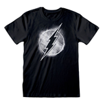 DC Flash T-Shirt Distressed Mono Logo