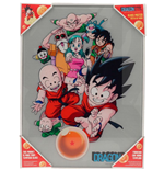 Dragon Ball Characters Glass Poster