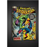 Canvas Amazing SPIDER-MAN/HULK Print On Canvas