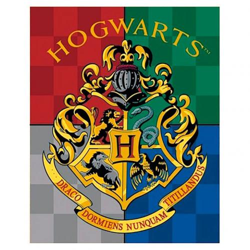 Harry Potter Fleece Blanket Hogwarts