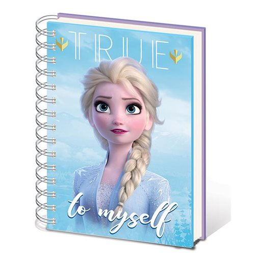 Frozen Notepad 378183