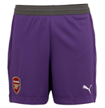 2018-2019 Arsenal Away Goalkeeper Shorts (Purple) - Kids